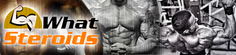 What Steroids - Online Blog